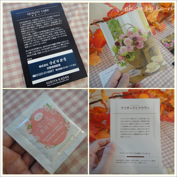 メッセージカード日比谷花壇6