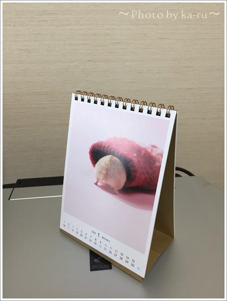 ハムケツカレンダーIMG_0432-005
