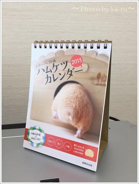 ハムケツカレンダーIMG_0427-001