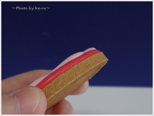 ミニラボの名入れ クッキーセット11