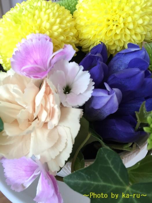 日比谷花壇 お月見セット「因幡の白うさぎのセット」の楽しみ方