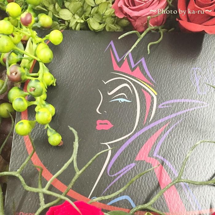 日比谷花壇 ディズニー フラワーフレームアート「ウィックド・クイーン」4