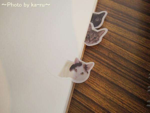 フェリシモ そこにいたの!? ノートで遊ぶ 猫ふせんの会IMGP9309_004
