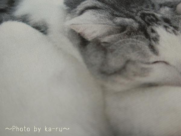 フェリシモ うだまさんちの猫とコラボ パッカーン!っと猫の開きポーチ_4