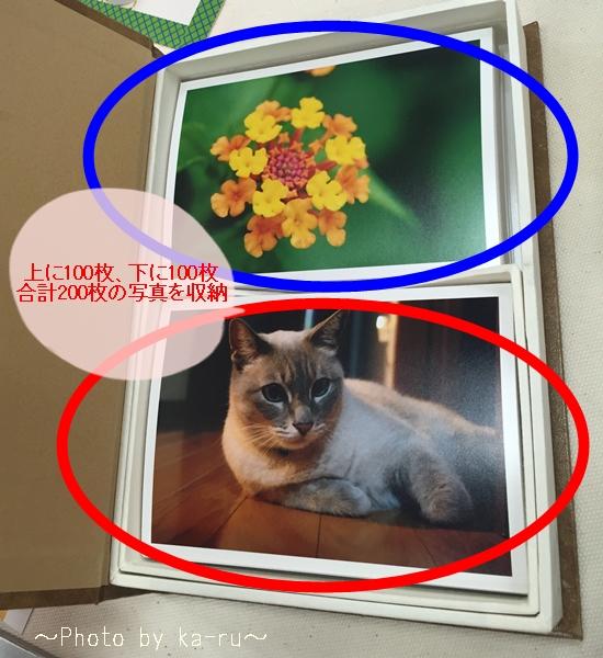 「FUJIFILMネットプリントサービス」アルバムボックス_3