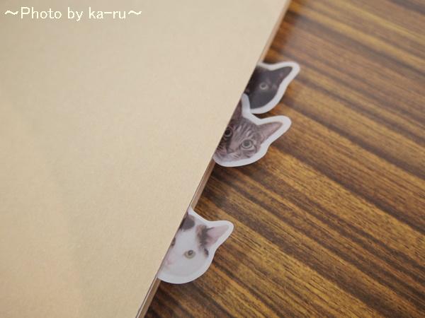 フェリシモ そこにいたの!? ノートで遊ぶ 猫ふせんの会IMGP9306_002