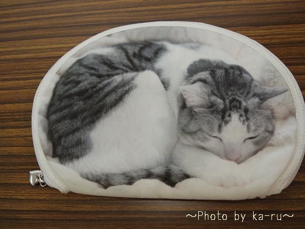 フェリシモ うだまさんちの猫とコラボ パッカーン!っと猫の開きポーチ_1