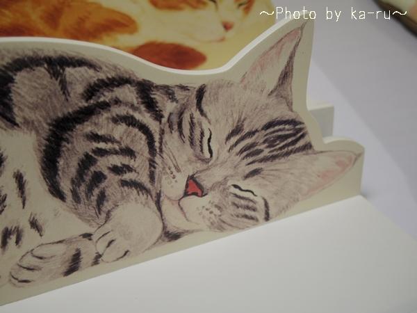 すやすや寝ている姿がかわいい!猫のカーテンレール ディスプレイ棚の会