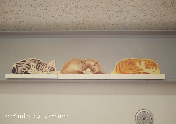 YOU+MORE! 高い所ですやすや眠る 猫のカーテンレール ディスプレイ棚の会_7