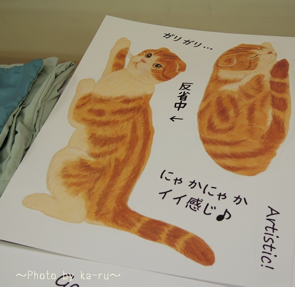 猫のウォールシールの会_k4