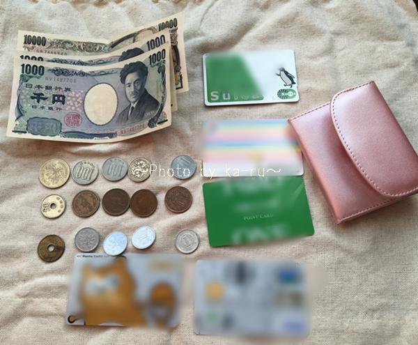 頼れるミニ財布(GIRL)手のひらサイズ19k1