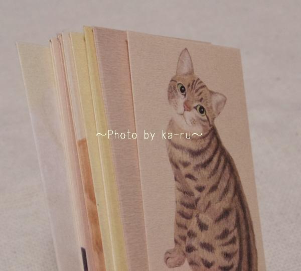 かわいい猫のポチ袋!会費などお金のやりとりが楽しくなりそう!フェリシモ