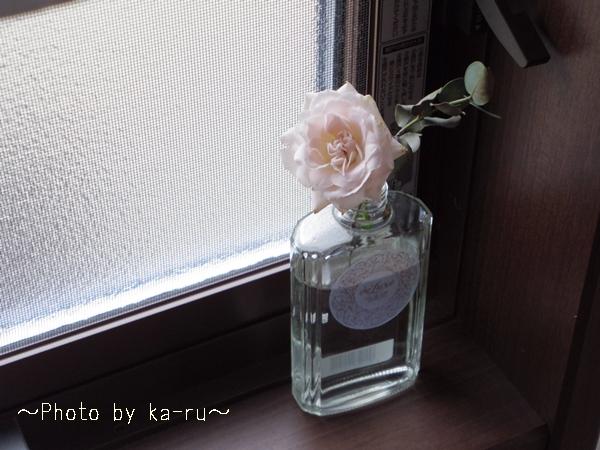 花束「ローズ」_12