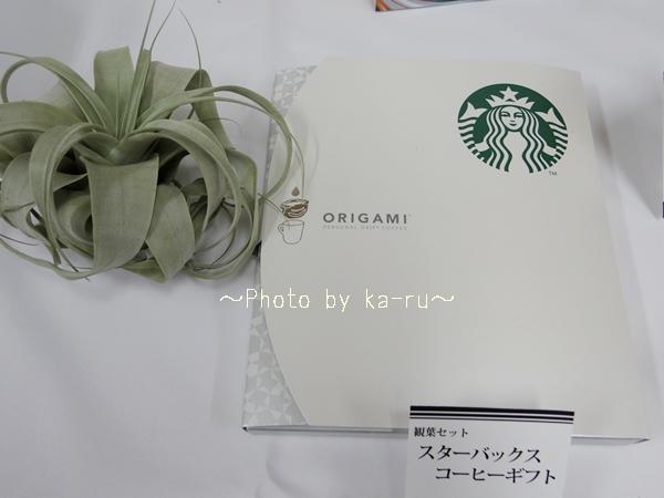 スタバのパーソナルドリップ(R)コーヒーとエアプランツ「キセログラフィカ」のセット