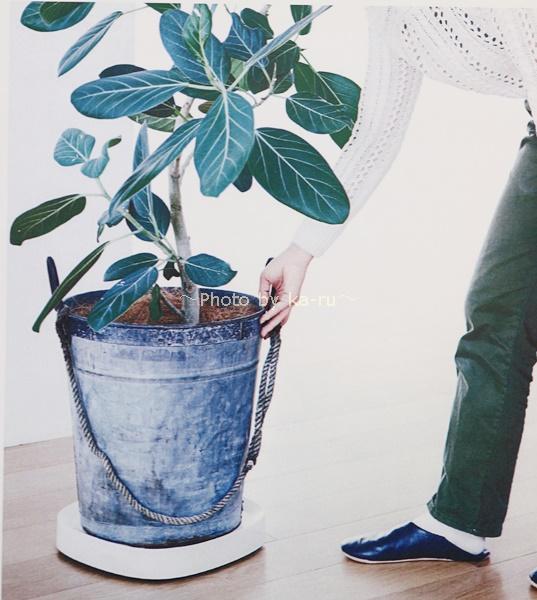 キャスターが見えない 植木鉢コロコロトレイ