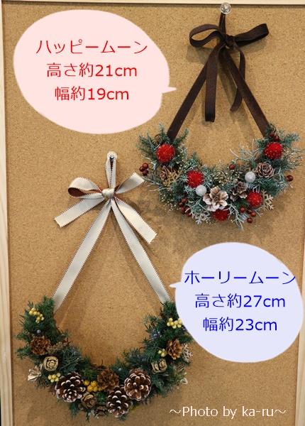 日比谷花壇クリスマスハーフリース_大きさ比較
