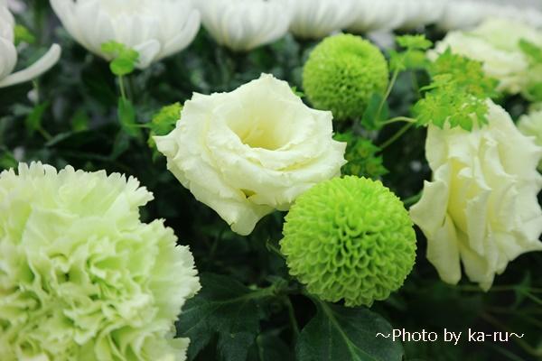 日比谷花壇のお葬式勉強会2