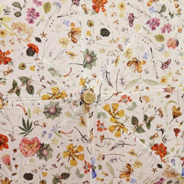 母の日 リバティプリント「日傘」とアレンジメントのセット_「Floral Eve」