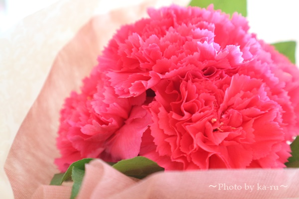 日比谷花壇花束_2