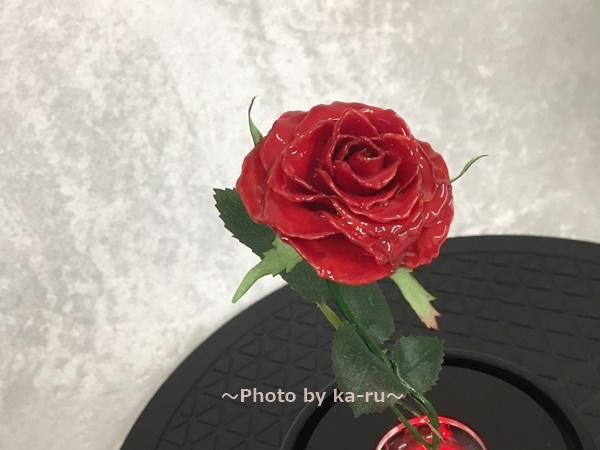 マジカルローズ 赤いバラ