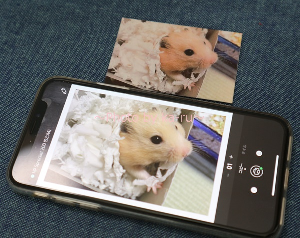HP Sprocket_iPhoneXSの画像と比較