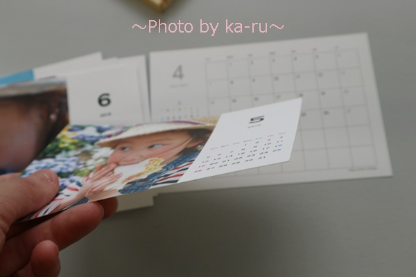 TOLOT(トロット)_用紙