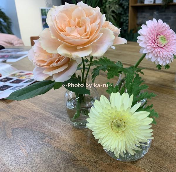 日比谷花壇「ハナノヒ」はお花の定額制アプリ_【日比谷花壇】ボブクラフトフラワーベース 3点セット