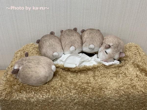 ぎゅうぎゅう集まって眠る ハムスターのボックスティッシュカバー_4匹 ハムケツ