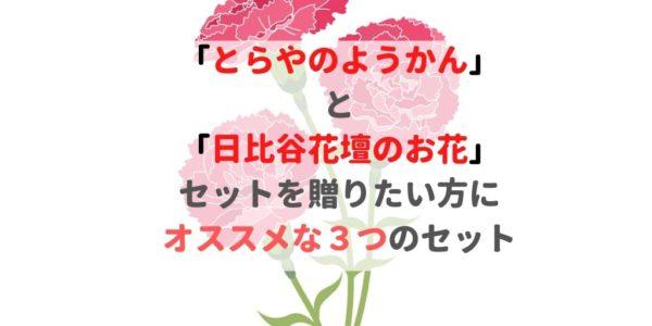 「とらやの羊羹」 と 「日比谷花壇のお花」 セットを贈りたい方に オススメな3つのセット