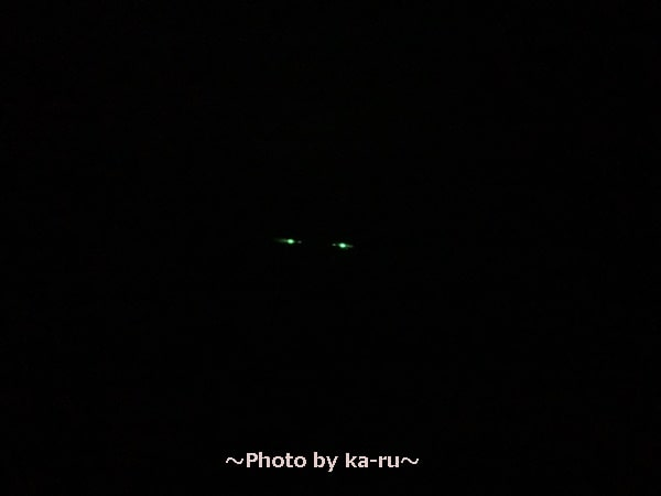 ここひえ2020暗い時 緑色のランプが光る
