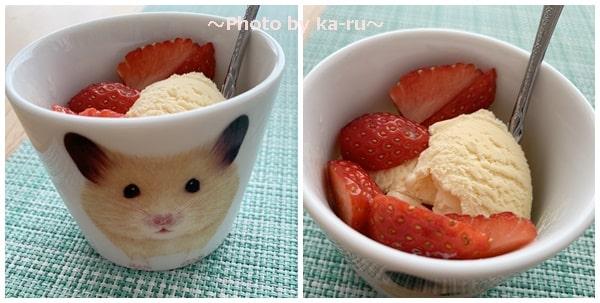フェリシモ「ハムスター雑貨コレクションの会」アイスを食べる