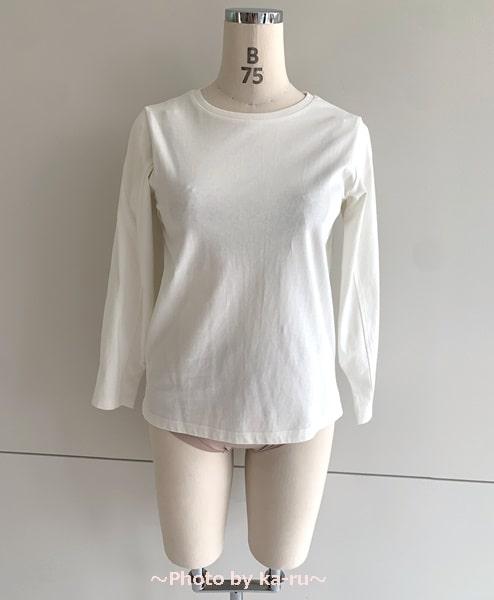 フェリシモ「背中への胸流れガードブラジャーの会」ヌーディーカラー白い服